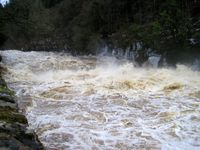 Clyde in spate at New Lanark 1, Jan 16th 2010