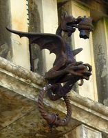 Asolo dragon, Italy 2008